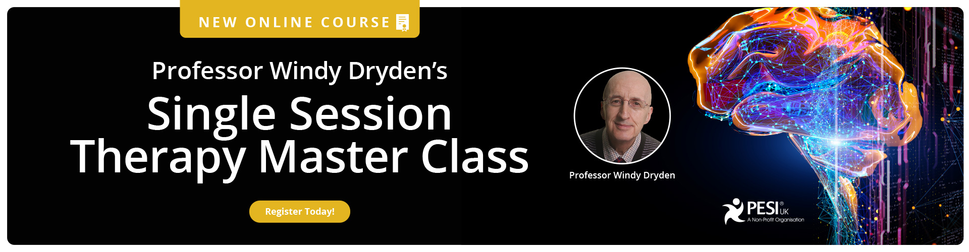 Professor Windy Dryden's Single Session Therapy Master Class