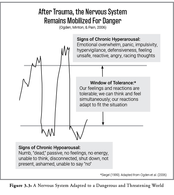 Figure 3.3 blog How Post Traumatic Symptoms Reflect Trauma