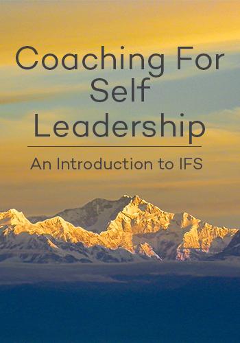 IFS Coaching