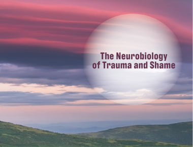 Blog The Neurobiology of Trauma and Shame