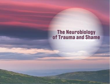 Blog The Neurobiology of Trauma and Shame