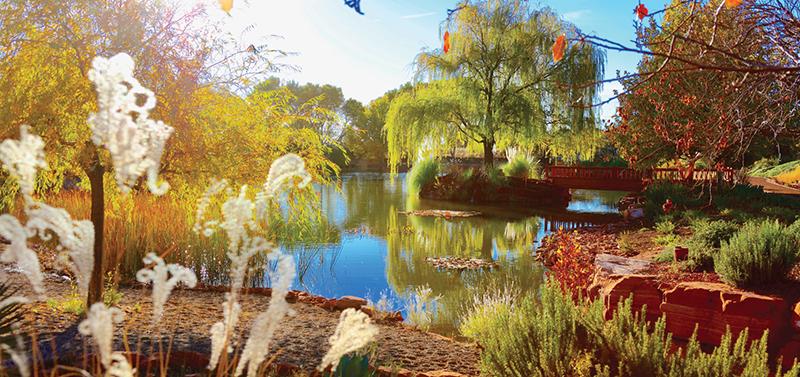 Autumnal lakeside landscape photo at the Sedona Mago Retreat Center