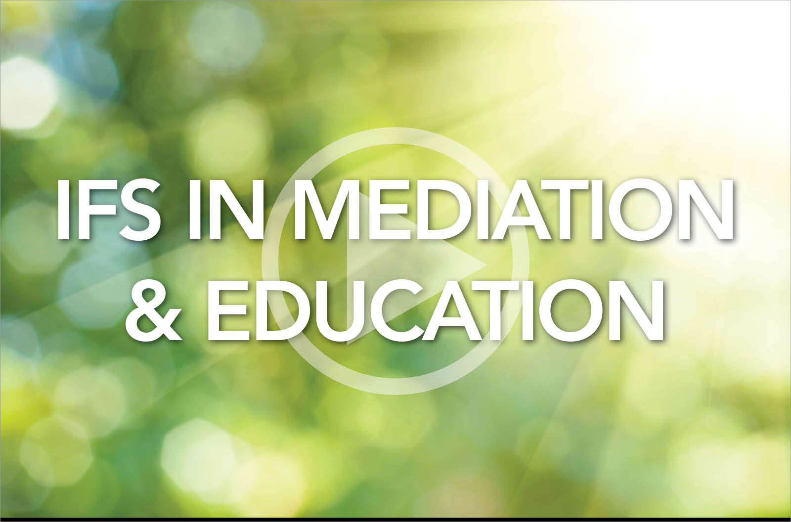 IFS in Mediation and Education