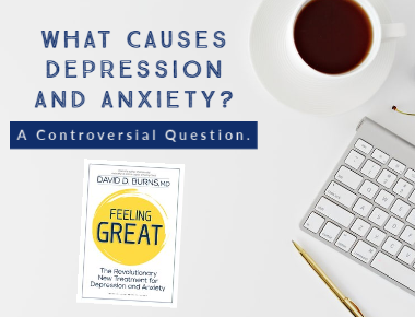 Link to blog What Causes Depression and Anxiety?